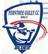 ferntree gully cricket club