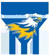 ferntree gully junior football club