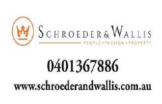 schroeder and wallis